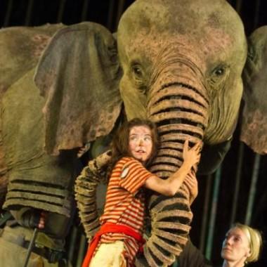 Running Wild Open Air Theatre (c) Alastair Muir