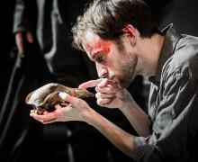 William Shakespeare, Kelly Hunter, David Fielder Finlay Cormack, Francesca Zoutewelle, Mark Arends