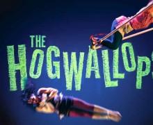 The Hogwallops, Lost in Translation Circus, Roald Dahl, The Twits, Down and Dirty, Edinburgh,Edinburgh Fringe 2016
